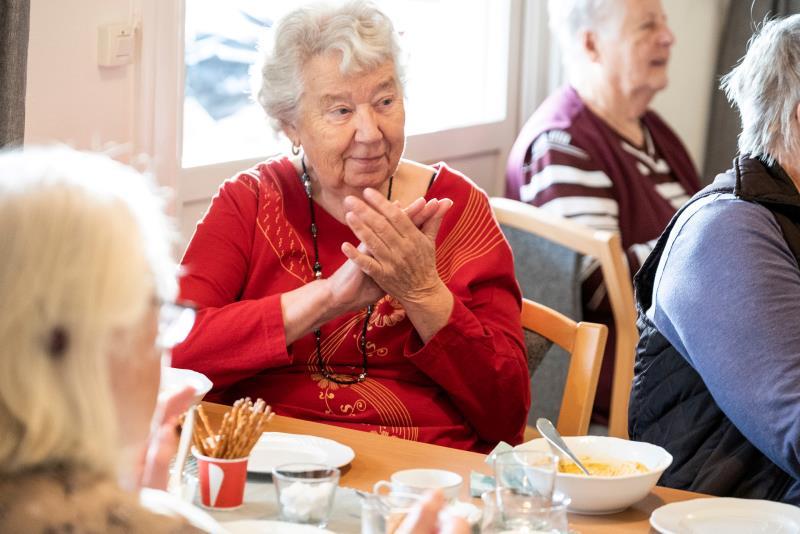 Mötesplatser För äldre I Södra Ving