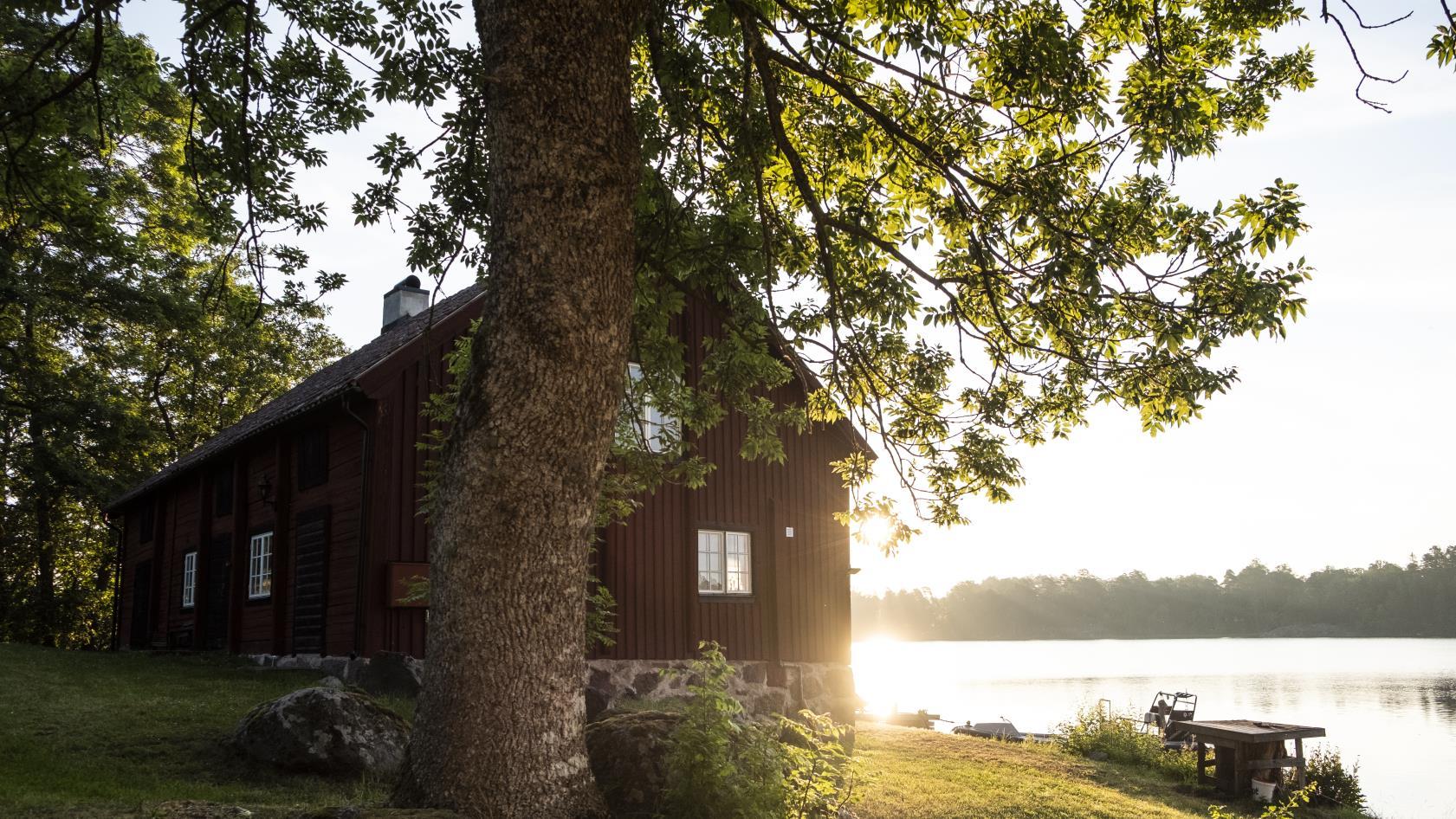 Sommarmorgon i Sverige i naturen.
