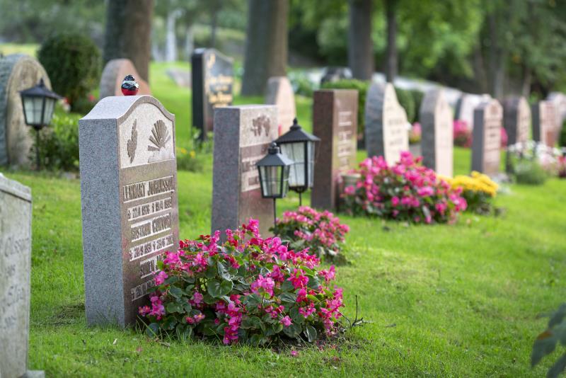 vad kostar en gravplats per år